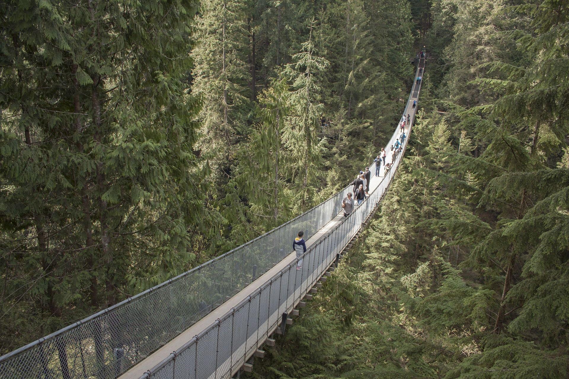 capilano-suspension-bridge-1393076_1920