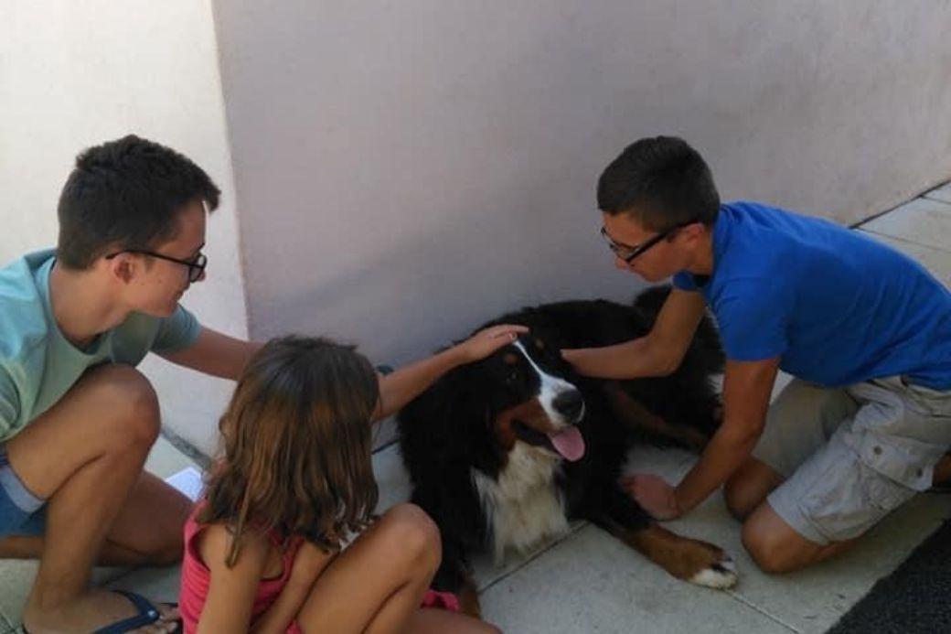 Alt HomeExchange_familia_perro_mascota, title HomeExchange_familia_perro_mascota