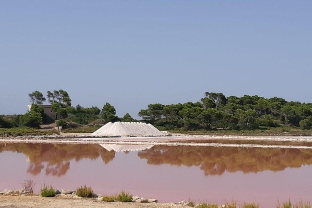 Alt Salinas_Mallorca_vacaciones_HomeExchange, title Salinas_Mallorca_vacaciones_HomeExchange