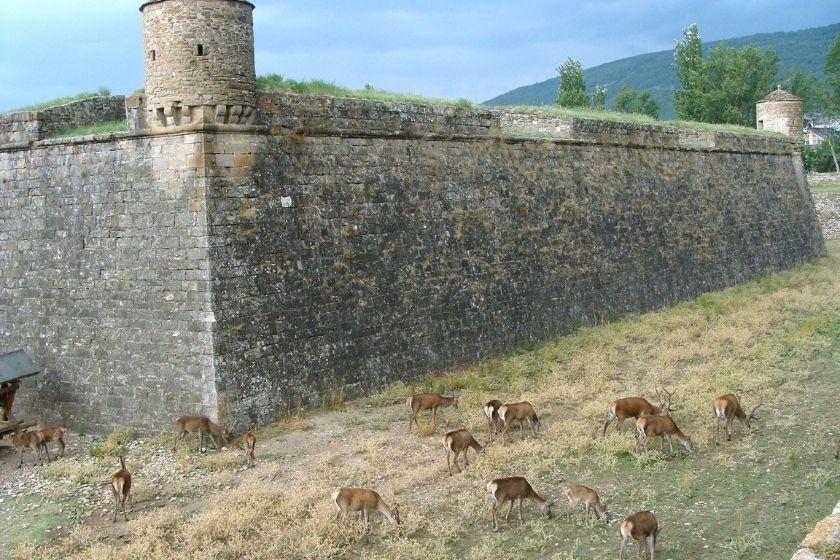 alt Jaca_ciudadela_vacaciones-rurales_ciervos_castillo_HomeExchange, title Jaca_ciudadela_vacaciones-rurales_ciervos_castillo_HomeExchange