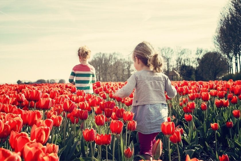 alt conservar-el-medio-ambiente_tulipanes_nin-os_intercambio-de-casas, title conservar-el-medio-ambiente_tulipanes_nin-os_intercambio-de-casas